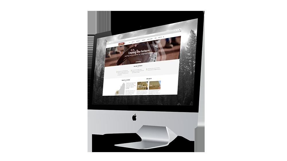 Carey-Website-1